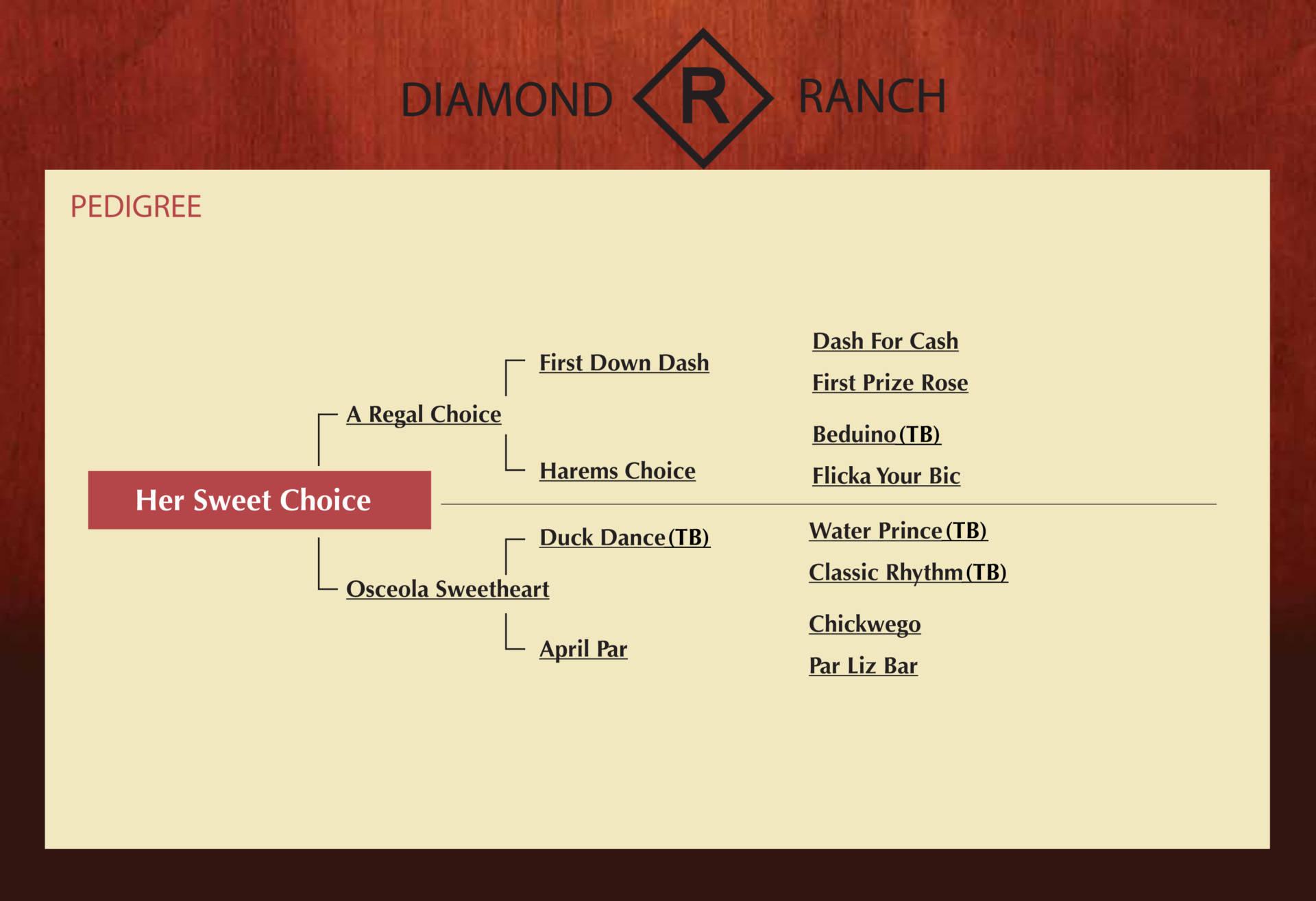 her sweet choice diamond r ranch
